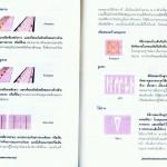 หน้าที่ 24-25