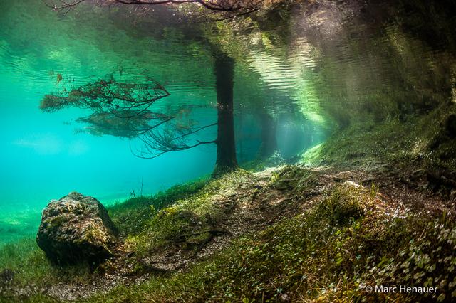 สวนใต้น้ำ7