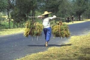Kampong-Speu_3-300x200