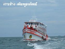 dive-kohchang2 (1)