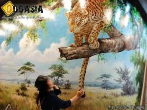 art-in-paradise (27)