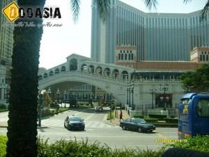 casino (3)