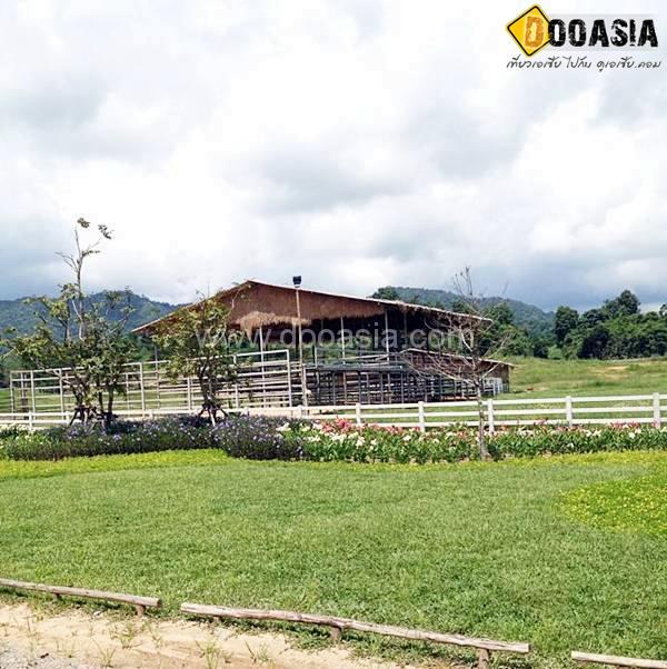 boon-rawd-farm (11)