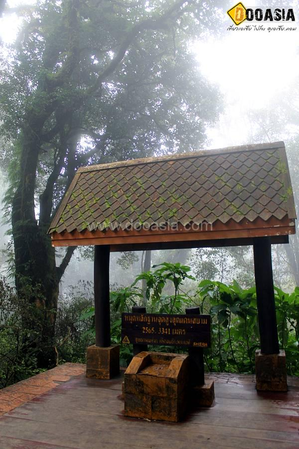 The highest point in Thailand (11)