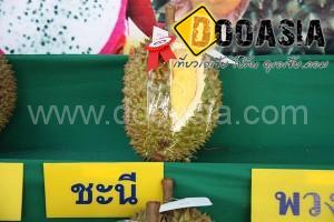 durianfestival (16)