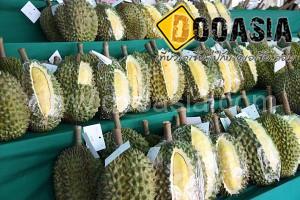 durianfestival (17)