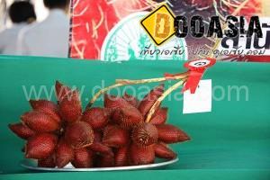 durianfestival (19)
