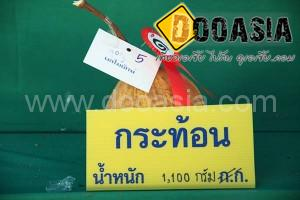 durianfestival (20)