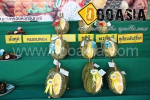 durianfestival (24)
