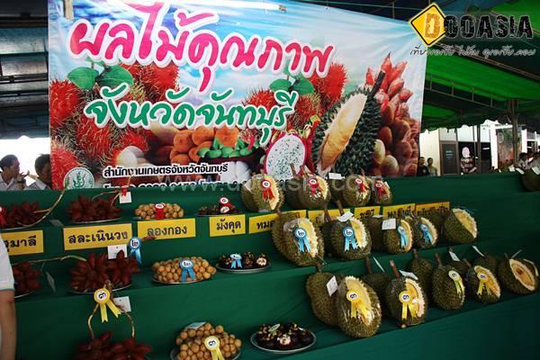 durianfestival (26)