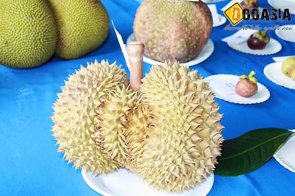 durianfestival (9)