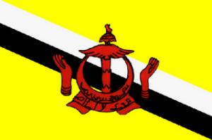 flag-brunei-darussalam-300x199