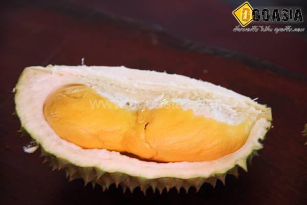 fruitbuffet (15)