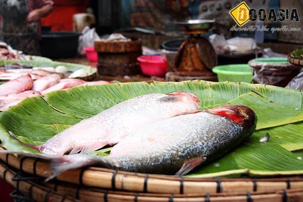 saraburi-market (28)