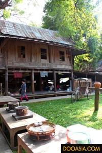 thaiyaun (25)