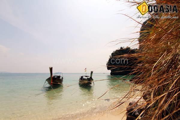 kohhong (9)