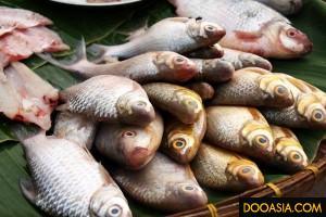 morning-market-uthaitani (17)