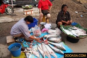 morning-market-uthaitani (21)