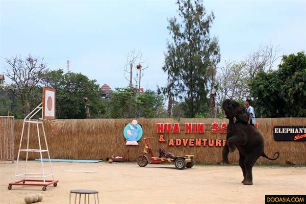 Huahin-safari (3)