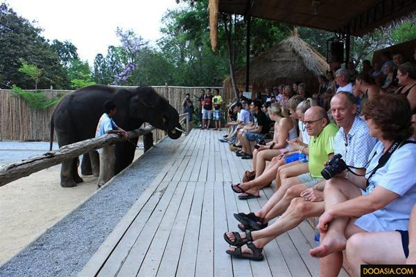 Huahin-safari (4)