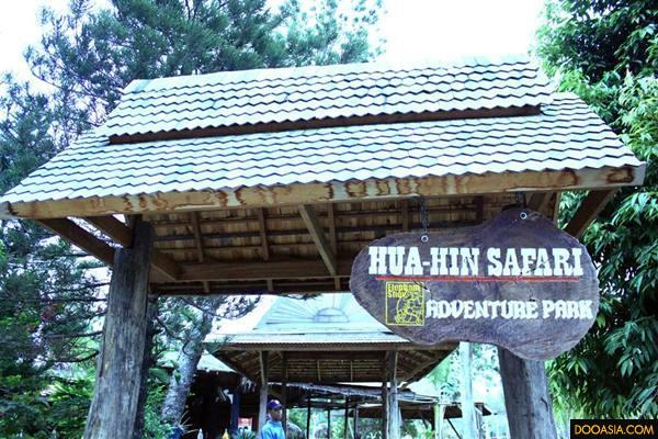Huahin-safari