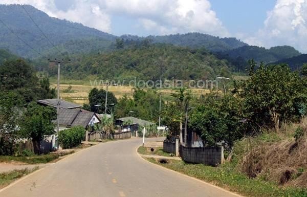banrakthai (2)