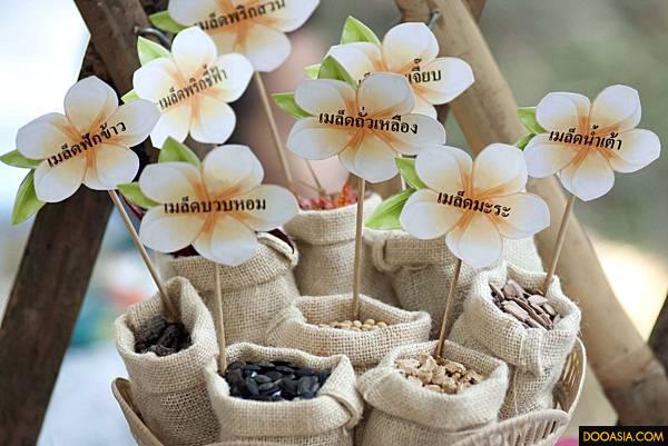 เมล็ดพันธุ์พืชชนิดต่่างๆ พร้อมปลูก