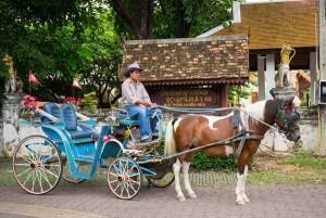 4 A touch of Thai Vehiles รถม้า ลำปาง  (3)